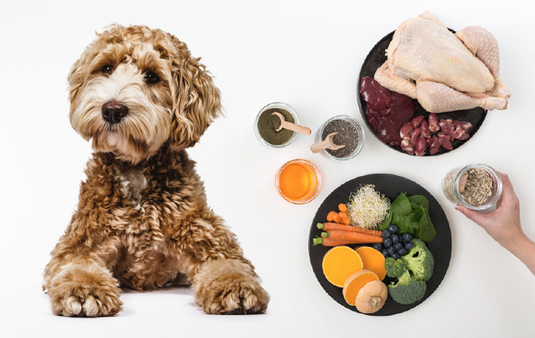Handling, Storing RaaW Pet Food