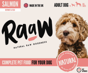 RaaW Salmon Dog Food
